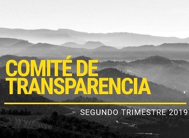 COMITE TRANSPARENCIA